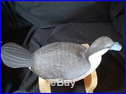 1988 Barnegat Bay style Ruddy Duck pair decoys George Strunk Glendora New Jersey