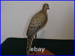 2007 Mourning Dove decoy by Ken Kirby from Little Egg Harbor, New Jersey