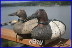 2-Canvasback decoys, Ron Saylor, Florence, Oregon, W. Mathewson Barnegat rig