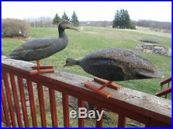 2 RARE! VTG LL BEAN Black Duck Cork Field Duck Decoys Goose Hunting Herters