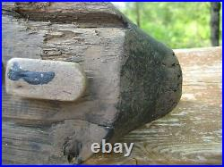 ANTIQUE / VINTAGE DUCK DECOY BLUE BILL DRAKE PREENER c1930's or 40's