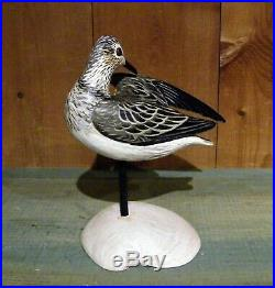 Anthony Hillman Preening Sandpiper Decoy Shorebird on Clam Shell duck goose crow