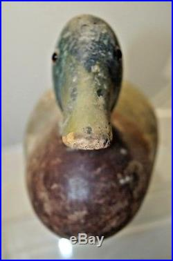 Antique 1890s 1920s Mason Mallard Drake Wood Carved Hunting Duck Standard Decoy