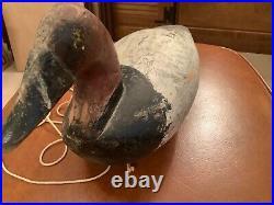 Antique Canvasback Drake Duck Decoy