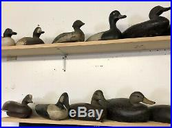 Antique Wood Decoy LIFETIME COLLECTION 125 Ducks Maryland New Jersey Mass Maine