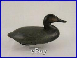 Antique Wood Duck Decoy Graham Holly Canvasback Pair Maryland Goose Shorebird