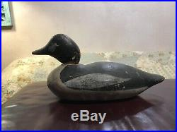 Antique decoy golden eye. Approx 14&1/2 inches in length. Hooker or Mason