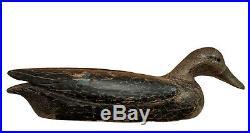 Black Duck Decoy Gerald Robertson