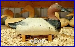 Bob McGaw of Havre De Grace Maryland Drake Canvasback