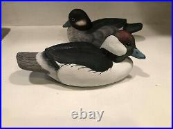 Bufflehead duck decoys
