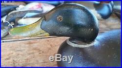 C 08 Mason Superb Prem Mallard Drake Decoy Duck Extra. Spec Paint Long Bill