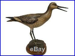 Calling Willet Shorebird Bill Gibian