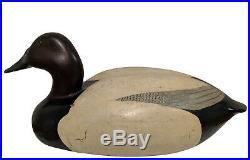 Canvasback Drake Decoy Bob White
