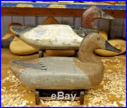 Canvasback Pair by Sam Barne of Havre de Grace MD