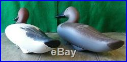Carved Wooden Hunting Canvasback Duck Decoy Pair Signed & Branded Jim Pierce