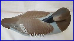 Collectable Vintage Preener Canvasback Hen Decoy (charles Bryan Middle River)