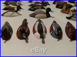Collection of 30 Signed Hand Carved Painted Wooden Duck Decoys on Display Shelf