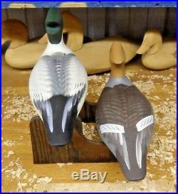 Common Merganser's Decoys by Havre de Grace Maryland Carver Dave Walker