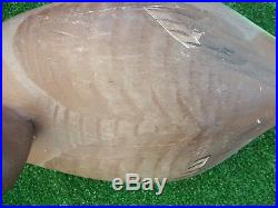 Decoy Duck W. M. B. Brand 15 Brown and Grey Canvasback Hen