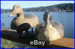 Duck decoys, Wildfowler Pintails, Old Saybrook, Conn, 1939-1957