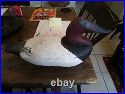 Early Canvasback Duck Decoy Antique Duck Decoy Scott Jackson Charlestown