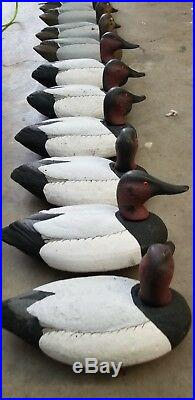 Herters Decoys Size 72 Divers Lot-12 Cans See Pic's