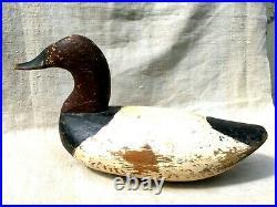 High Head Upper Chesapeake Canvasback Drake Duck Decoy