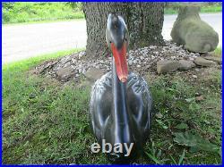 Huge Vintage Handcarved Black Swan Decoy Bob Hayden Original26 Long Glass Eyes