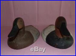 J. Evans McKinney Maryland Pair of Iron Sink Box Hunting Decoys Canvasback 1995