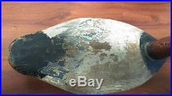 Jim Currier Canvasback Drake Decoy. Havre De Grace MD. Upperbay gunned over decoy