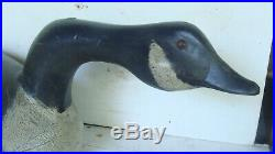 Long necked working glass eye goose decoy, original paint