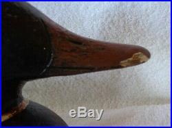 Mallard Cedar Wood Duck Decoy By Sperry