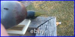Mason wooden Challenge Grade Mallard Drake all Original Paint antique decoy