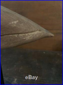 New Jersey Plover Shorebird Decoy, Mackey Collection