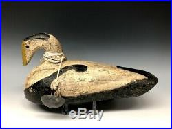 Old Maine Eider Duck Hunting Decoy Decoys Wood Antique Vintage