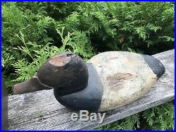Old Working Canvasback Decoy