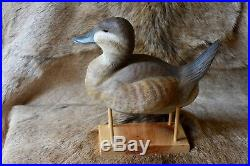 Outstanding 1996 Hand-carved Drake Ruddy Duck Decoy By Carver Dick Bonner Ln