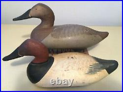Pair of Working Canvasback Duck Decoys Madison Mitchell Eastern Shore 1950