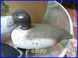 RARE! 6 NOS NEW VTG Herters Cork BUFFLEHEAD Duck Decoys 1/2 dozen magnum 72