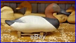 R. Madison Mitchell of Havre De Grace Maryland Drake Canvasback