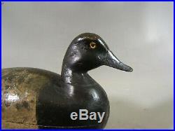 Scaup duck decoy William Hulse Point Pleasant, NJ ca. 1900