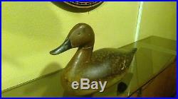 Spiegel Rig Pintail Hen Duck Decoy