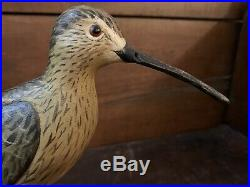 Tony Hillman Eskimo Curlew Shorebird Decoy