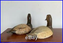 Torry Ward Gunned Over Drake & Hen Canvasback Decoys Hand Carved 1981