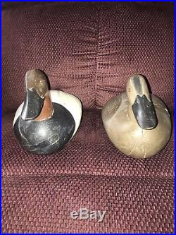 VINTAGE Pair Of Canvasbacks DECOY by Paul Gibson HAND CARVED & PAINTED