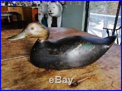 Very Rare Mason 1895 Premier Black Duck Decoy Turned Head Pic In Mason Bk