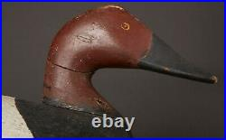 Vintage Canvasback Drake Duck Decoy By Unknown East Coast Carver