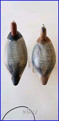 Vintage Decoys Jim Currier RedHead Duck Goose Shorebird Chesapeake Bay