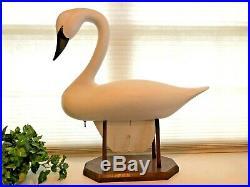 Vintage Graceful Huge WHITE SWAN DECOY by JIM PIERCE, HAVRE DE GRACE, MD, Signed