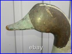 Vintage Marvin Midgette Bull Sprig Decoy Kill Devil Hills, North Carolina NC VA